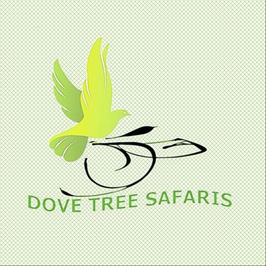 DOVE TREE SAFARIS