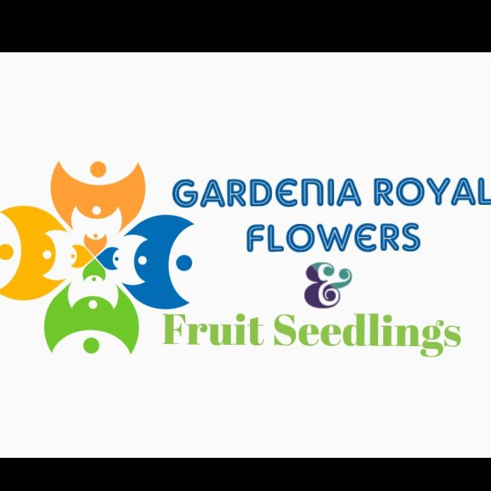 GARDENIA ROYAL FLOWERS AND FRUIT SEEDLINGS LIMITED