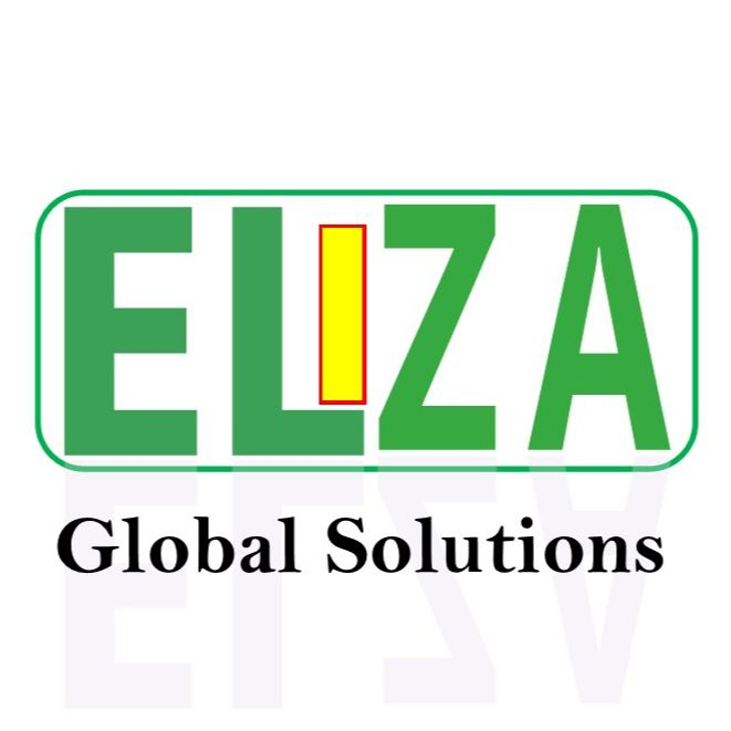 ELIZA GLOBAL SOLUTIONS